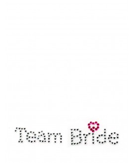 Team bride schoenstickers