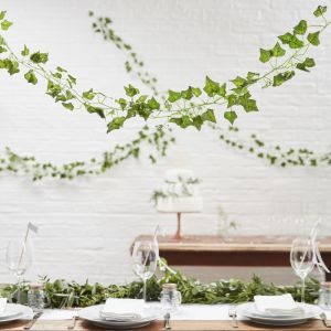 Decoratieve klimop | Beautiful Botanic